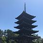 奈良の賞道は一味違って